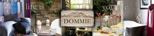 2009 dommie ebay header larger