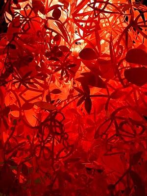 Paper lanterns 5