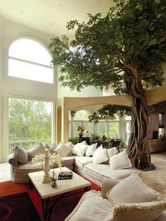 Tree in home