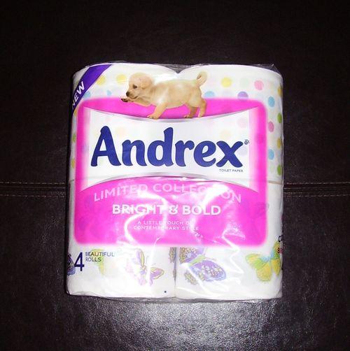 Andrex paper 1